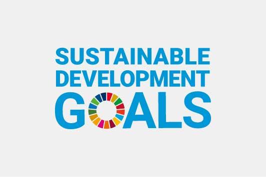 SDGs(持続可能な開発目標)からのテーマ設定